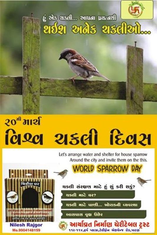 World Sparrow Day 2016